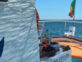 Lagos Blue Cruises