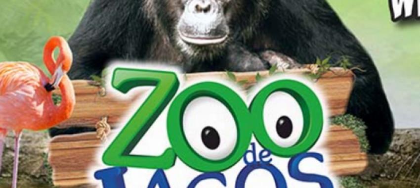 Animais Exóticos no Maior Zoo do Algarve!