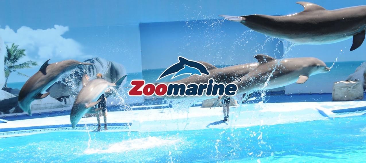Zoomarine - O Mistério dos Oceanos - Entradas para Júnior e Adulto no Algarve